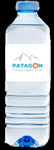 PATAGON.png