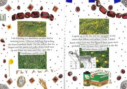 Dandelions / Ladybugs