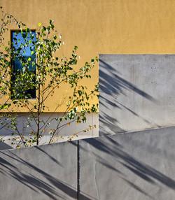 Mustard House_03