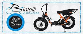 Icon Bintelli Website1.jpg