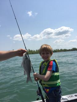 Kids / Family / Silver Bass