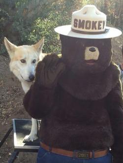 Smokey the Bear & Takoda