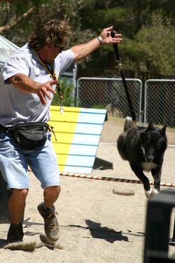 Paul training Shadow