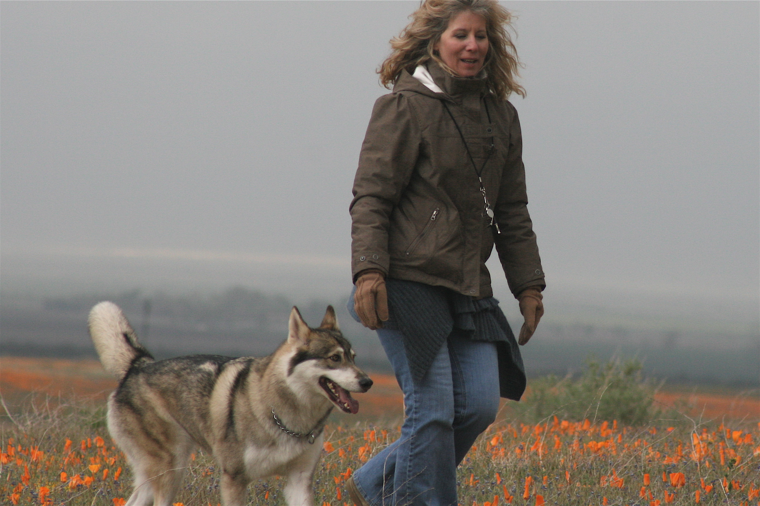 Walking with Wolves