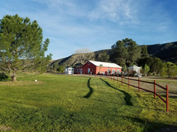 The Ranch, Freedom
