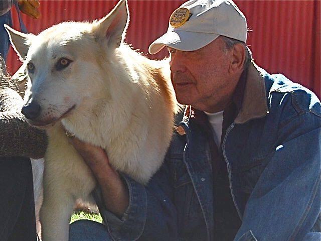 Wolf love.