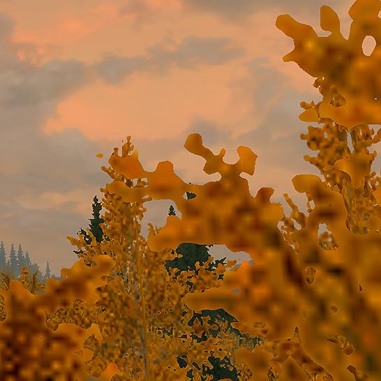 orange_03.png
