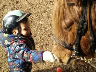 Fortsetzung unserer Pferdespaßkurse für unsere Kleinsten !