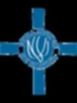 LIS Logo Med. withough Background.png