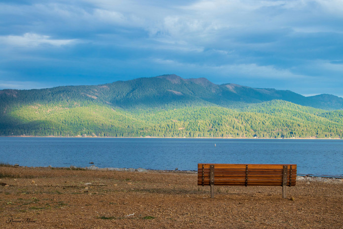 Lake Almanor Bench