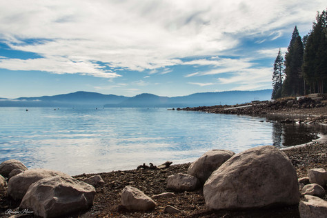 Lake Almanor.jpg