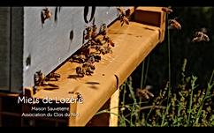 Screen Shot 2020-09-20 at 23.01.39.png