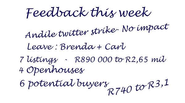 weekly feedback.jpg