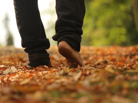 体を動かす事が、歩く事がとても大切