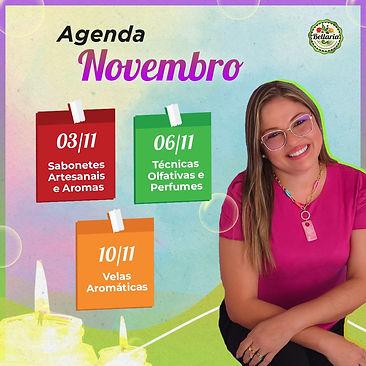 Agenda de Cursos de Novembro