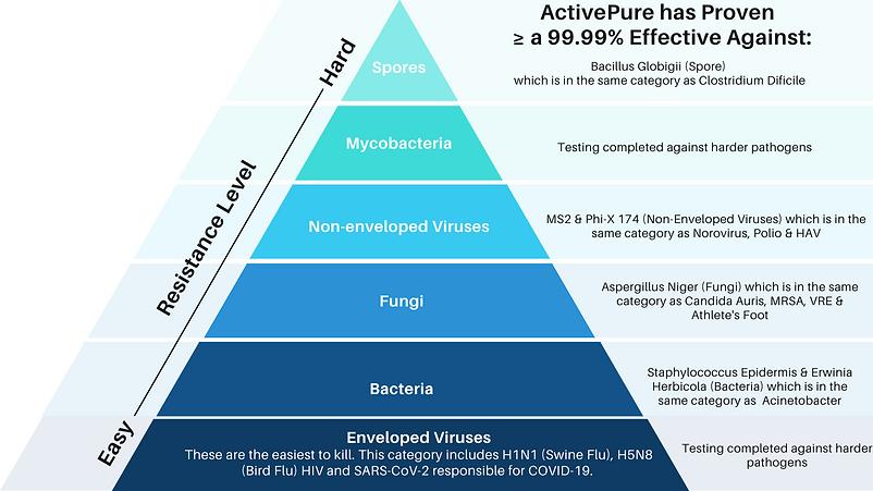 ActivePure Pyramid.png