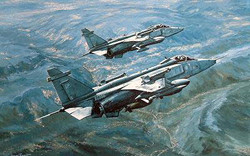 Jaguars Over Bosnia-Michael Rondot