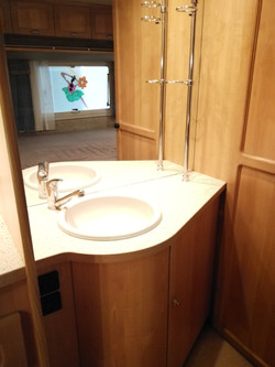 Great Sink with Mirror