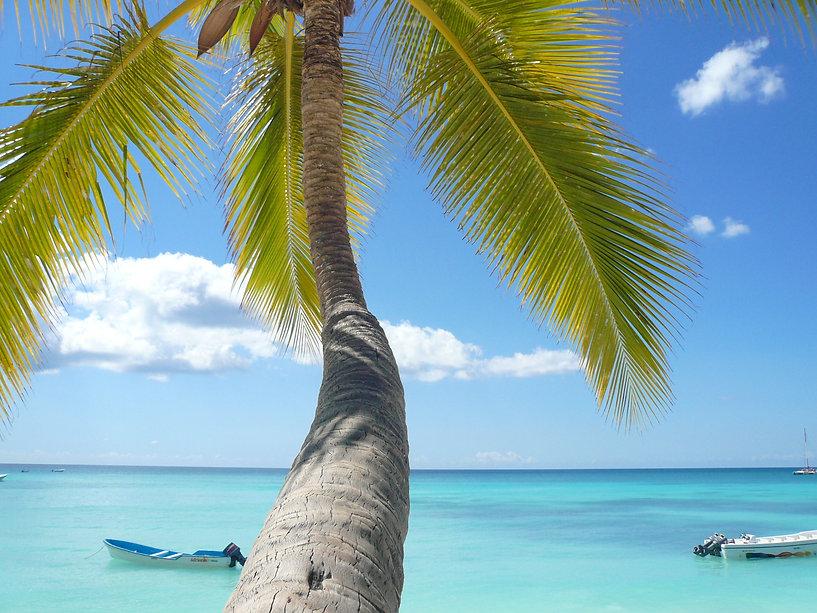 vacations-714156.jpg