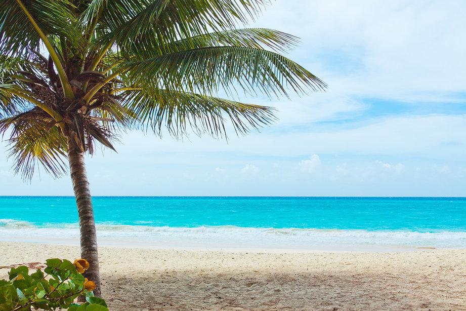beach-84561.jpg