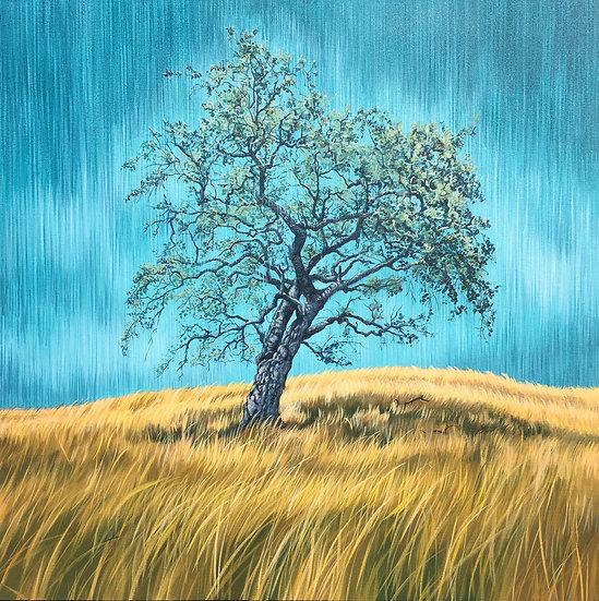 Acrylic painting of oak tree in a brown field