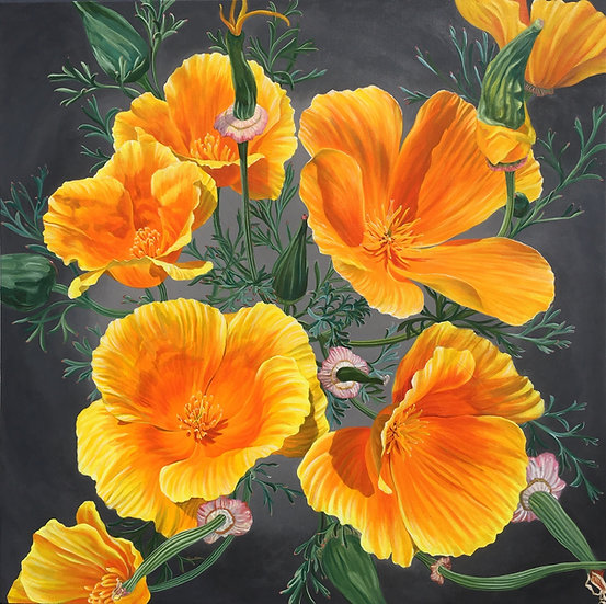 Acrylic painting of California poppies springing from a gray background