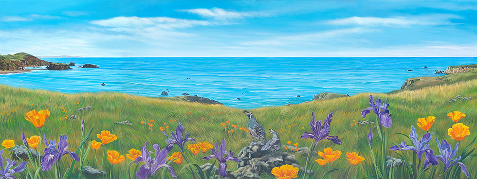 Giclée canvas print depicting douglas iris, poppies, and a California quail, with the Sonoma coast in the background