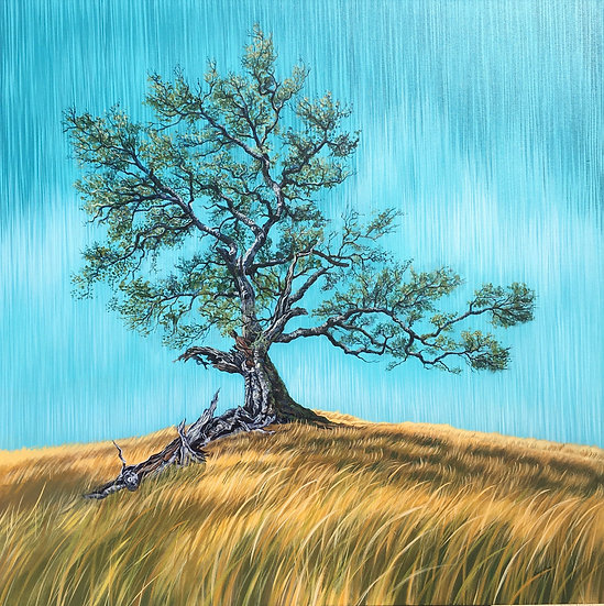Giclée canvas print depicting a giant oak tree in a brown field