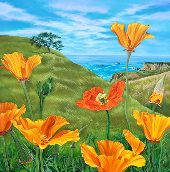 Giclée canvas print depicting California poppies, with the Sonoma coast in the background