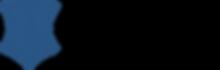 Logo_Salt_Segurança.png