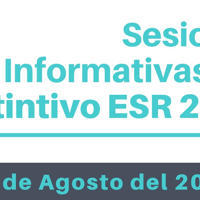 Sesión Informativa Distintivo ESR 2020 (13 de Agosto)