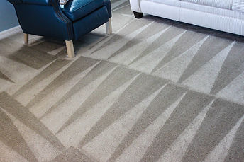 Carpet Cleaning Picture 3.jpg