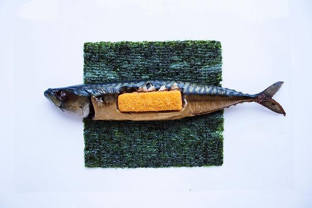 fish stick.jpg