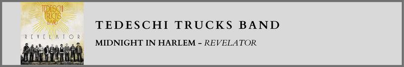 Tedeschi Trucks Band - Midnight In Harl