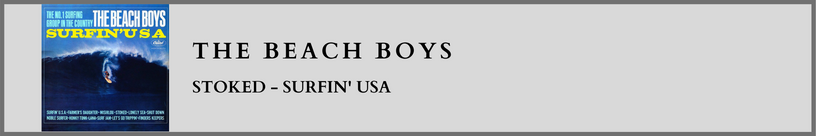 The Beach Boys- Stoked.png