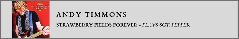 Andy Timmons - Strawberry Fields.png