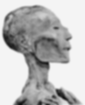 962px-Ramses_V_mummy_head.png