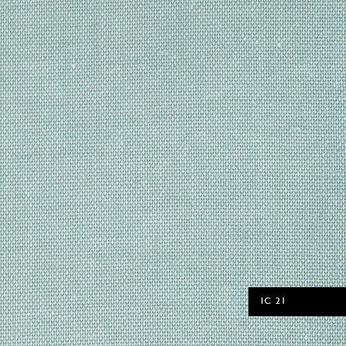 IC21.jpg