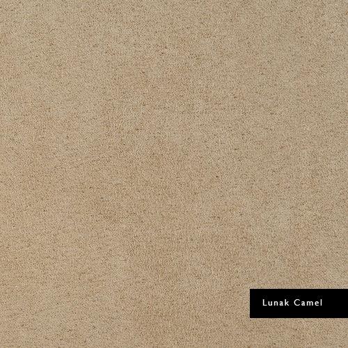 Lunak-Camel.jpg