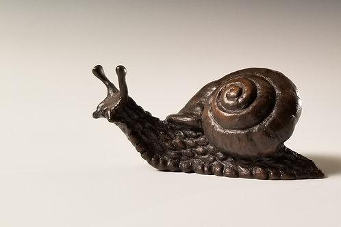 Snail Bronze