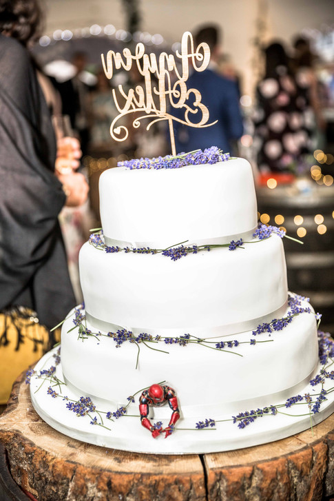 Alex and Anwen Wedding 23-06-2019 WEB-62