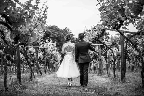 Alex and Anwen Wedding 23-06-2019 WEB-57