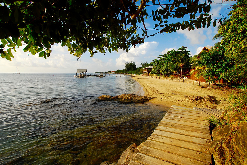 Roatan, Honduras, my favorite beach, has the second largest barrier reef in the world.