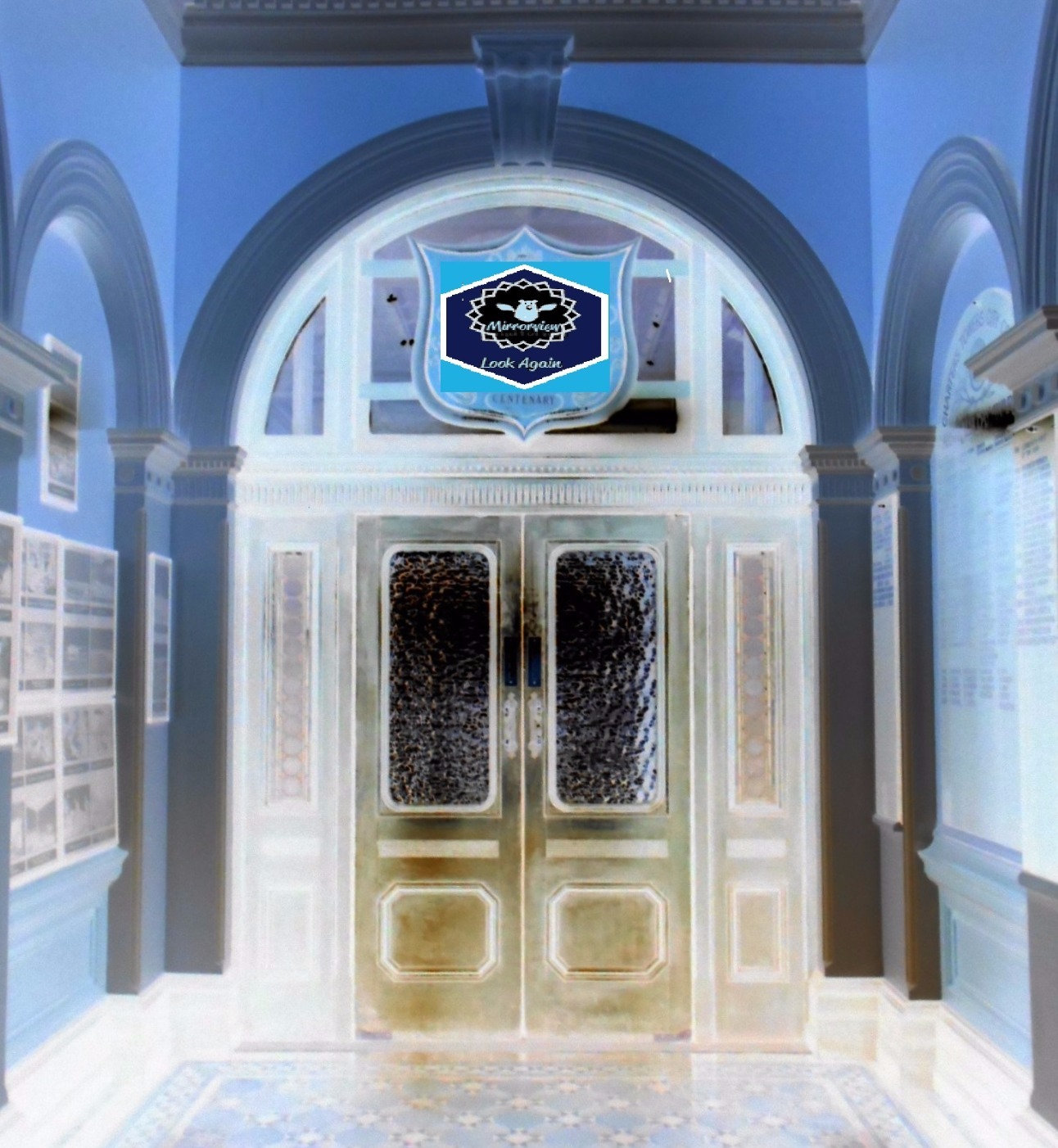 Mirrorview DOOR Session