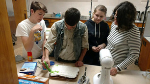 Youth bake-off