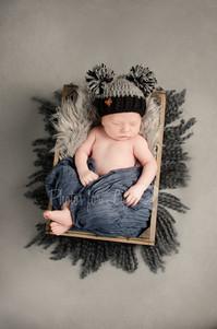Newborn in crate, grey Glasgow