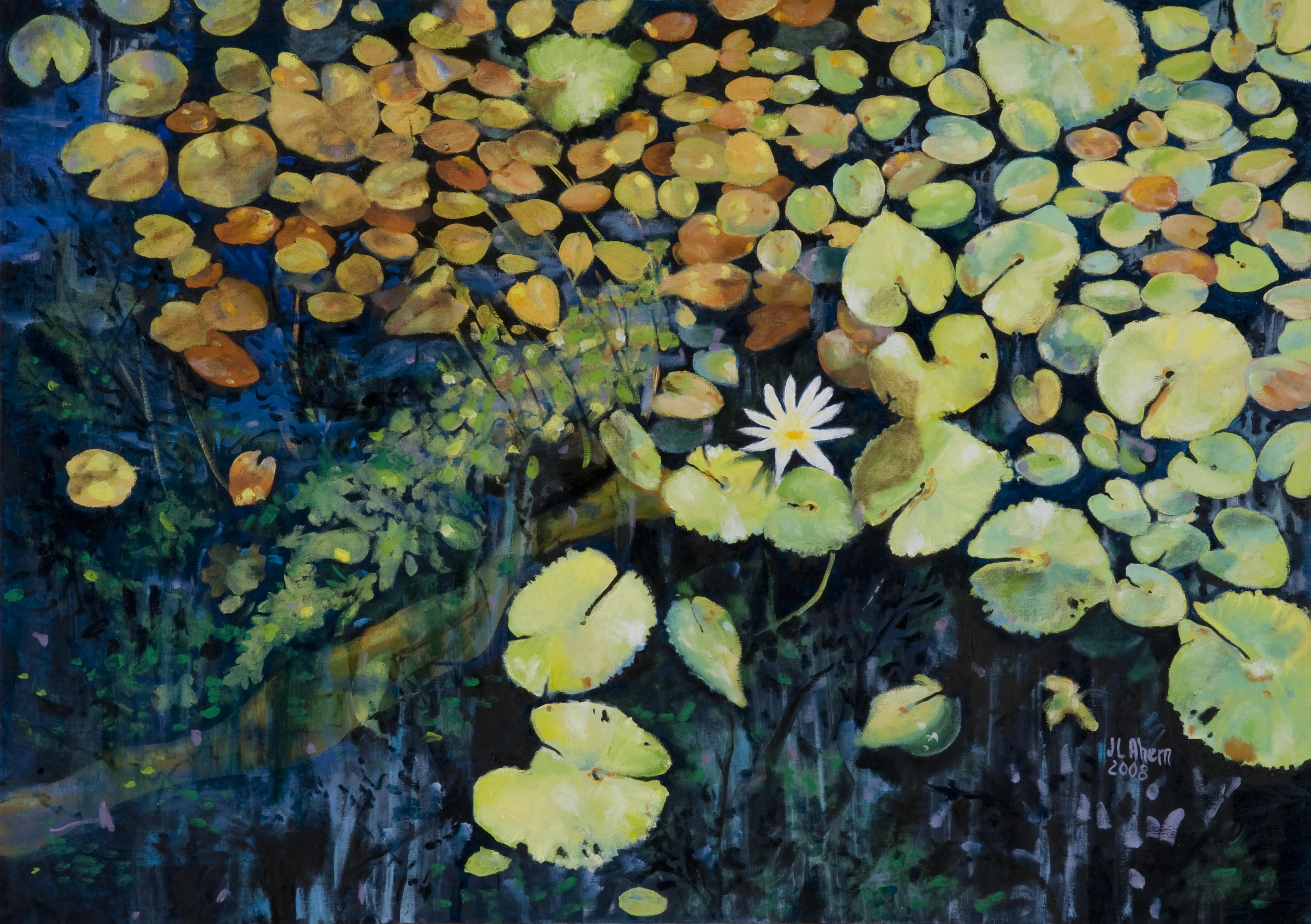 Cenote, Mexico IV.jpg