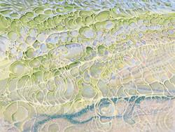 Gulf of Mexico I