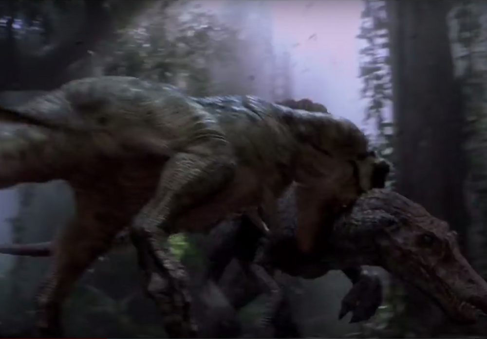 Fight scene from Jurassic Park III