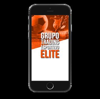 grupo elite.png